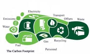 What is Carbon Footprint and Why Is It So Important?